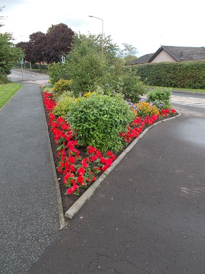 View of flower bed on Springfield Road near Spar shop