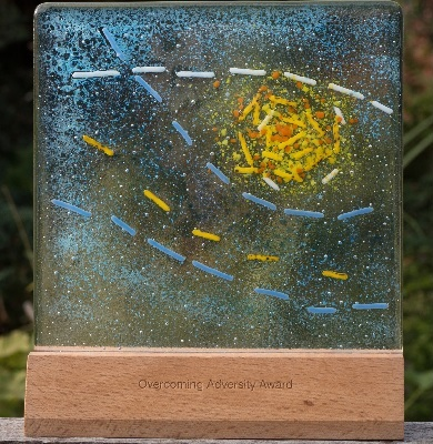 Overcoming Adversity plaque 2017