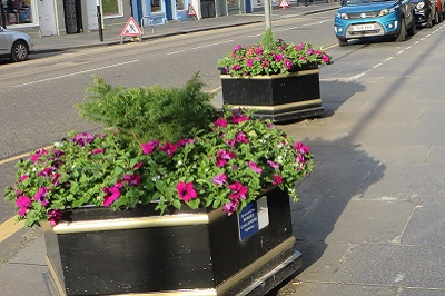 Planters Outside Jersey Bean Cafe