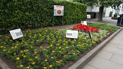 Transition Linlithgow's World War One Remembrance Bed