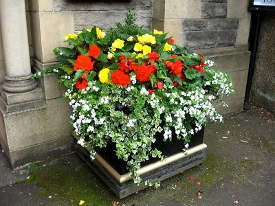 Planter Outside St Peter's Church